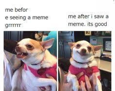 Meme Loving Fuck - pero like i have no energy lol pinterest
