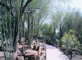 Largest Botanical Garden by The Largest Botanical Cactus Garden In The Southwest Is Right Here