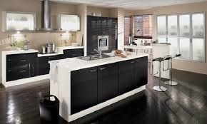 Painting Kitchen Cabinets Black The Elegant Painting Kitchen Cabinets White Costa Home