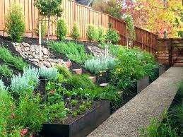 Ideas For Backyard Landscaping On A Budget Landscaping Design Backyard Garden Designs On A Budget