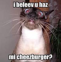 Meme Cheezburger - teaching media literacy with memes gradhacker