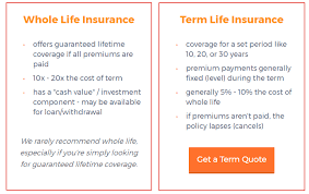 life term insurance quotes captivating 5 reasons dave ramsey suze orman are right term is