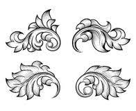 vintage baroque floral scroll set ornament vector from