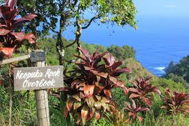 17 stops on the road to hana in maui