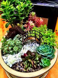 Dish Garden Ideas Blumentopf Deko Gestalten Sie Ihren Erwünschten Mini Garten Im