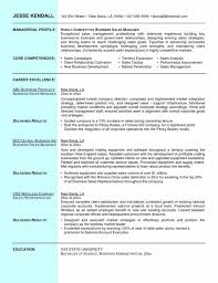 Best Government Resume Sample by Manager Sales Director Resume Examples Resume Objective Best