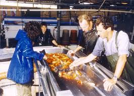 live fish trade