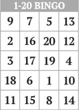 free printable 1 20 number bingo card generator