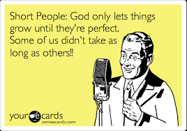 Short People Meme - short people god only lets things grow until they re perfect some