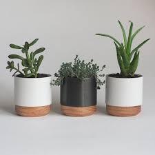 best plant for desk best 25 best ideas about desk plant on pinterest plant decor