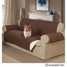 sofa fã r hunde die besten 25 pet sofa cover ideen auf sofabezüge