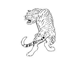 tiger outline tiger outline designs tiger