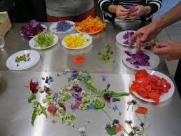cuisine plantes sauvages album plantes sauvages de nos cagnes atelier gastronomique