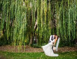 descanso gardens wedding descanso gardens wedding dining at descanso gardens