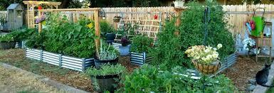 metalgardenbeds com metal garden beds