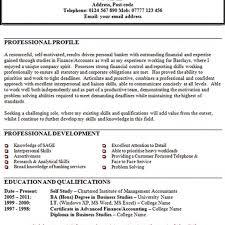 resume professional profile example