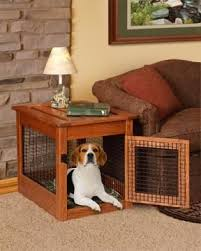 How To Build End Table Dog Crate by Best 25 Dog Crate End Table Ideas On Pinterest Diy Dog Crate
