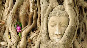 the bodhi tree buddhists org