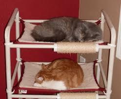 cat hammocks rover company