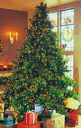 design 10 ft pre lit tree prelit artificial