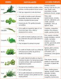 les herbes de cuisine fines herbes fraîches comment et avec quoi dossiers cuisine