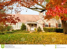 Fall Autumn by House Philadelphia Yellow Fall Autumn Leaves Tree Royalty Free