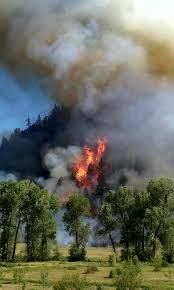 Colorado Wildfire Status by 100 Acre Fire Grows West Of Durango Evacuations Ordered Fox31