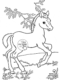 baby horse pony coloring page for kids for girls coloring pages