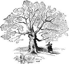 Oak Tree Drawing The Charter Oak Clipart Etc