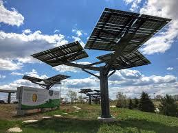 solar trees spotlight solar