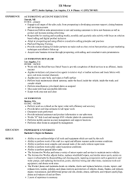sle resume for business analysts duties of executor of trust automotive resume sles velvet jobs