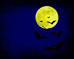 Creepy Halloween Poem Halloween Bat Wallpapers U2013 Festival Collections