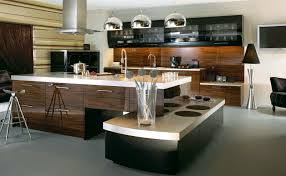 newport beach kitchen designer brings the contemporary kitchen to