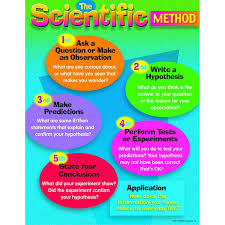 best 25 scientific method ideas on scientific method
