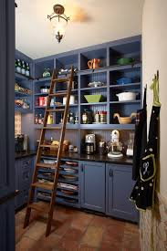 kitchen addition ideas 47 cool kitchen pantry design ideas shelterness