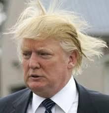 Flips Hair Meme - donald trump 1 blank template imgflip
