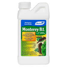 monterey b t bacillus thuringiensis pint concentrate outdoor