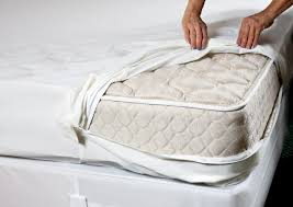 Bed Protector What A Bed Bug Mattress Protector Do U2013 Best Bedbug Mattress Cover