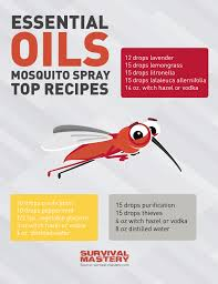 homemade insect repellent making natural insect sprays and lotions