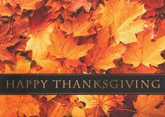 happy thanksgiving from all at adventures in golf message to our