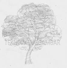 tutorial menggambar orang dengan pensil teknik menggambar pohon teknik menggambar