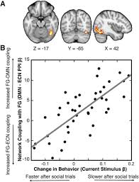 large scale network coupling with the fusiform cortex facilitates