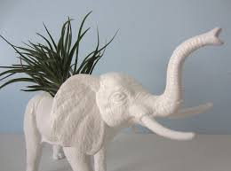 hand made upcycled toy planter white elephant with air plant by