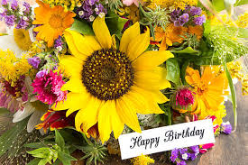 flowers birthday free flowers birthday images pictures and royalty free stock