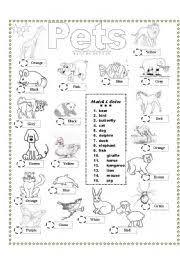 worksheet coloring u0026 matching pets