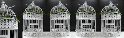 birdcages for wedding birdcages for hire outdoor wedding hire