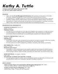 Excellent Good Resumes Examples by Professional Profile Resume U2013 Inssite