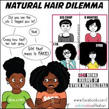 Natural Hair Meme - natural hair dilemma adorkable affiliation