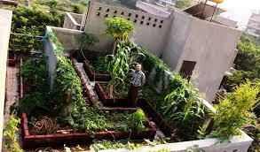 terrace gardening design of terrace garden terrace garden a peaceful spot to