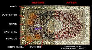 Oriental Rug Cleaning London Oriental Rug Cleaning Mark U0027s Cleaning Service Mark U0027s Cleaning